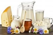 Диетологи выступают за включение в меню худеющих молокопродуктов и сыров
