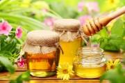 Мед официально признан универсальным лекарством