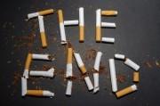 Мозг – основная причина слабохарактерности заядлых курильщиков