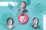 Вскоре в Британии появятся дети с тремя родителями