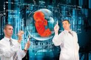 Ученые получили карт-бланш на создание генномодифицированных эмбрионов