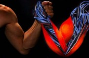 Выращена самовосстанавливающаяся мышца