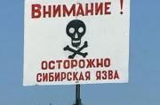 Сибирская язва атаковала, граничащий с Украиной, район Молдовы