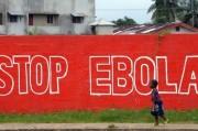 Эбола обманула ВОЗ