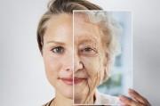 Ученые связали скорость старения с микрофлорой кишечника