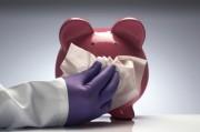 Свиной грипп снова в Европе