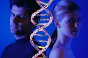 Генетики заговорили о влиянии предыдущих партнеров на плод