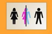 В Германии вышел закон об официальном признании наличия третьего пола