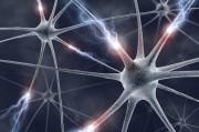 Электричество, порождаемое человеческим телом, возможно, будет использоваться