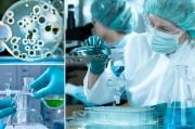 Российские ученые обещают продемонстрировать вакцины против Эболы