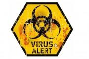 ВИЧ и компьютерные вирусы оказались родственниками