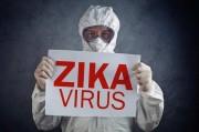 Вирус Зика у границ Украины