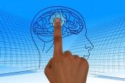 Возможность воскрешения мозга обрела новые перспективы