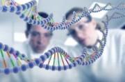 Рак следует не лечить, а выключать, считают генетики